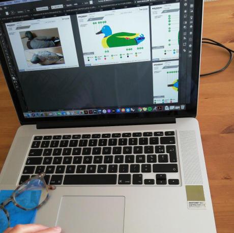 Design des couleurs des formes de canard colvert Solognac sous photoshop par la designer