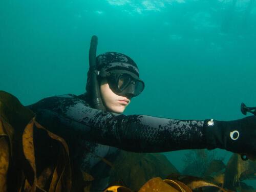 Reprendre en sécurité la chasse sous-marine après l'hiver