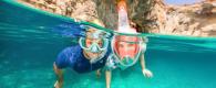 Spots incontournables snorkeling subea