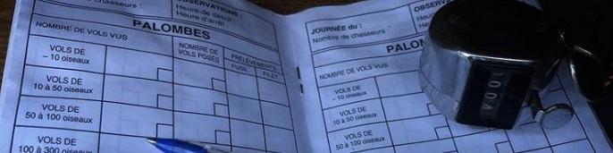 Registre de données migratoires sur le pigeon ramier par la FDC33