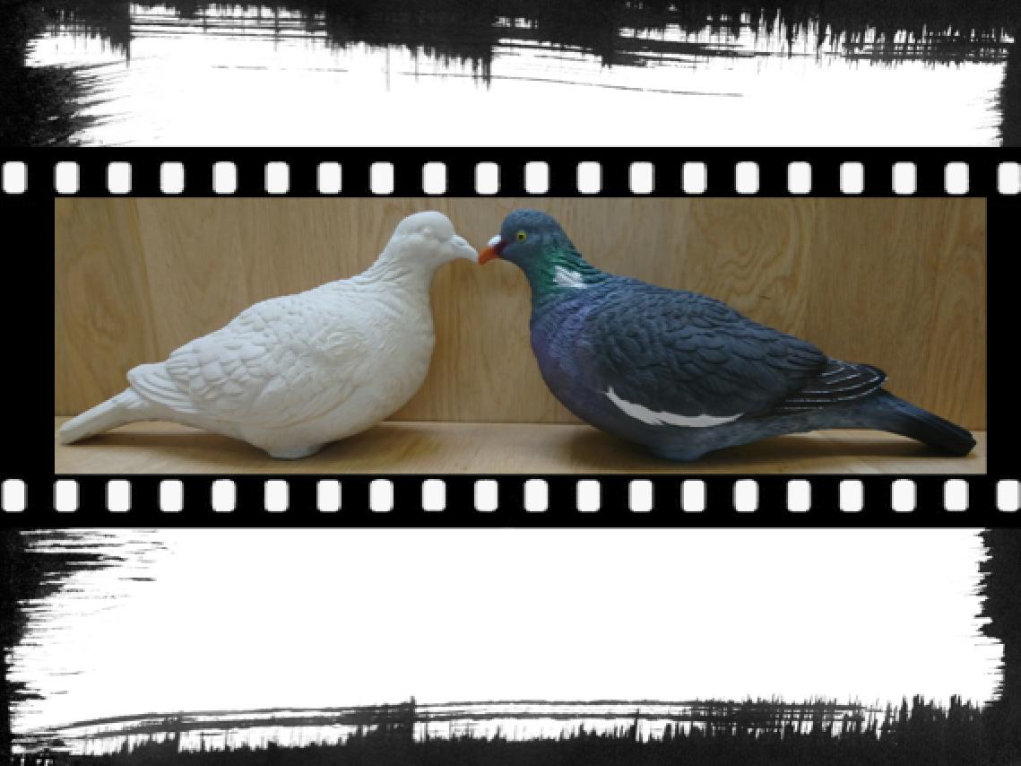 Avant dernière étape de fabrication des blettes pigeon ramier Sologanc