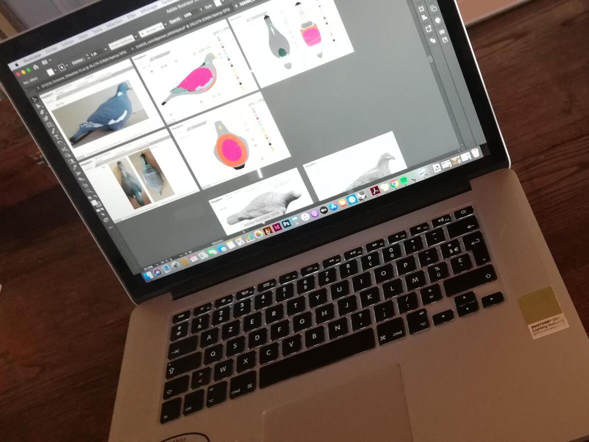 Design des couleurs des formes de pigeon ramier Solognac sous photoshop par la designer