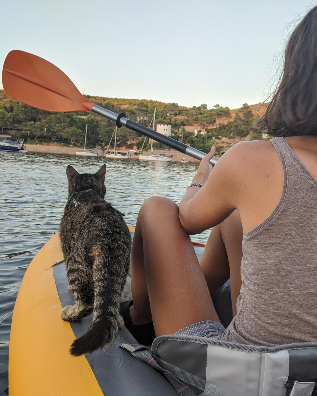 kayak annexe bateau
