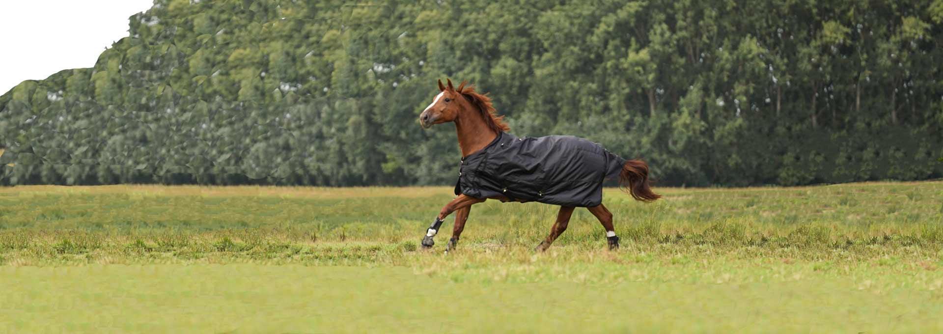 equitation decathlon couverture cheval poney