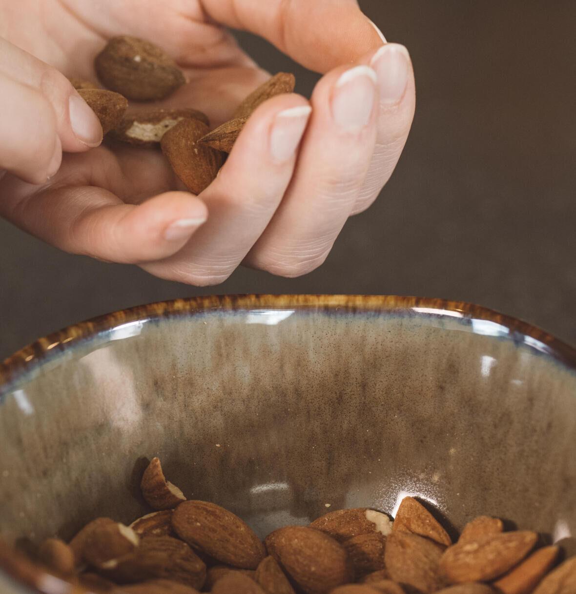 alimentos Oleaginosos nozes amendoas seco