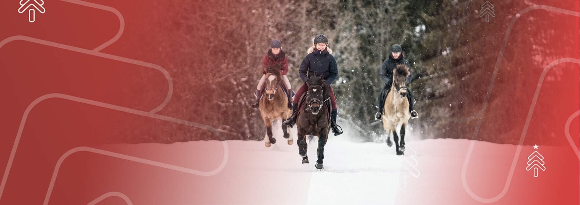Equitation decathlon noel 2020