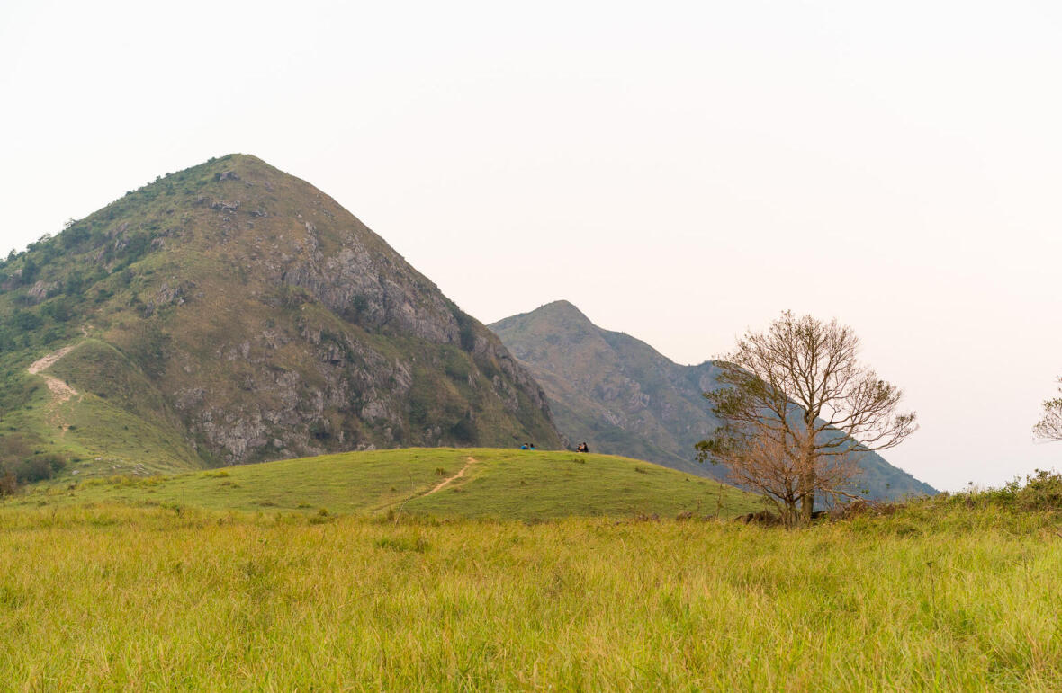 遠足 | 鳳凰山上迎接新一年