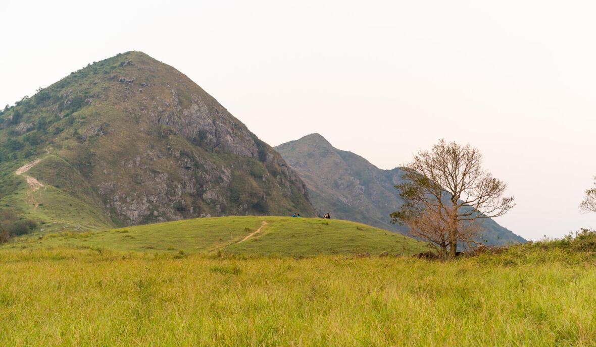 Hiking | New year hike to start afresh