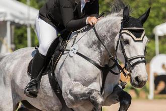Tamara Ducatel, conseillère sport en équitation à Boisbriand en compétition équestre sur son cheval.