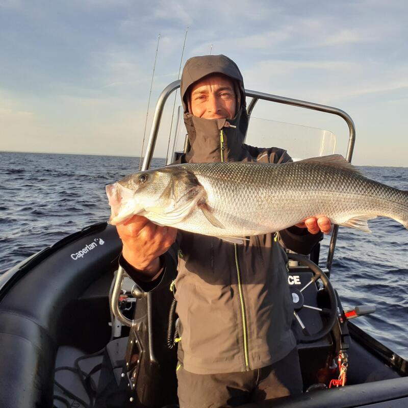 Comment pêcher le bar en début de saison ?