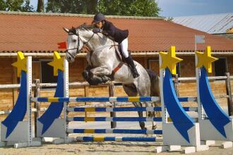 Equitation : les 3 grandes disciplines équestres de compétition