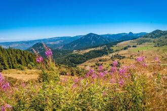 Top 5 hiking routes in Auvergne-Rhône-Alpes