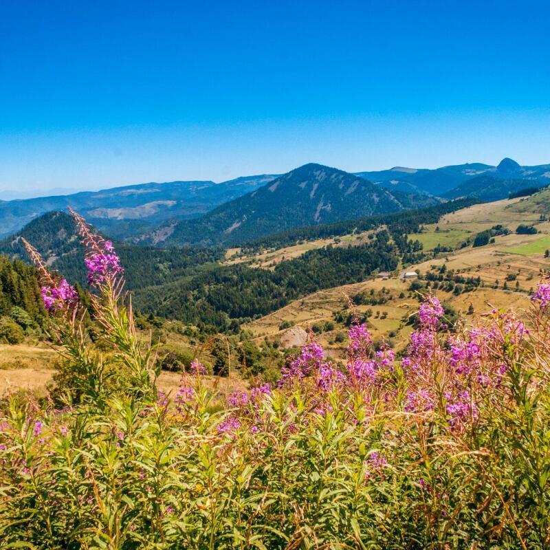 Top 5 des itinéraires de randonnée en Auvergne-Rhône-Alpes