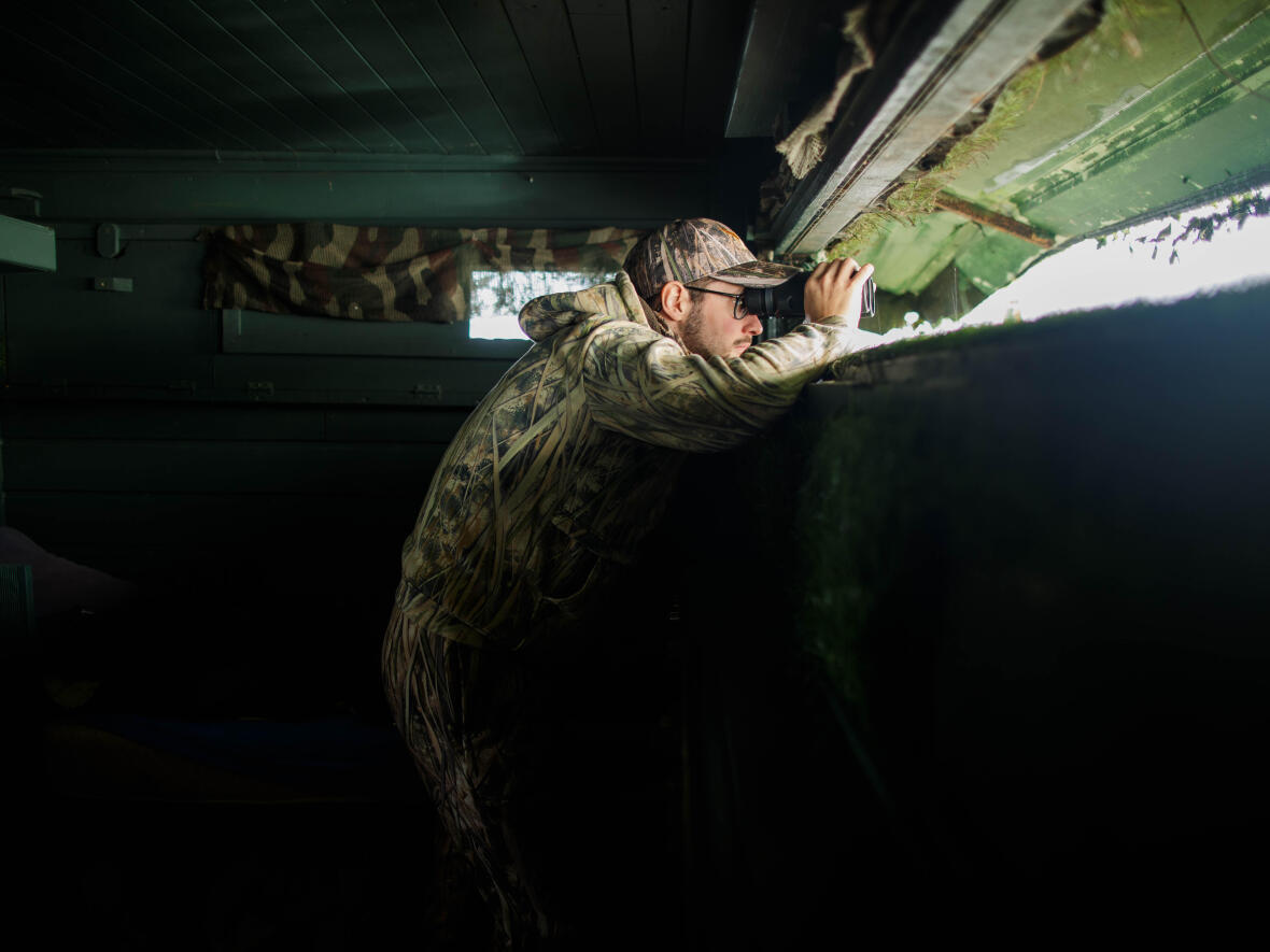 Observation chasse gibier eau