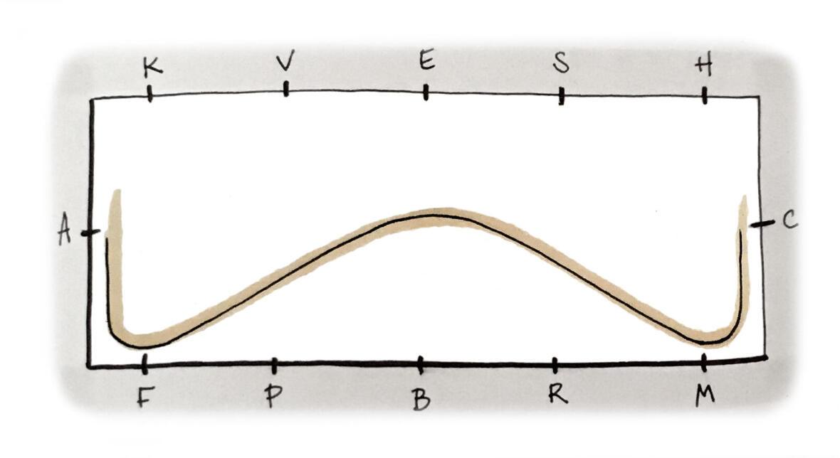Exercice pour une transition galop-trot-galop