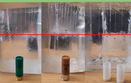 Les munitions sans plomb : vers une transition écologique